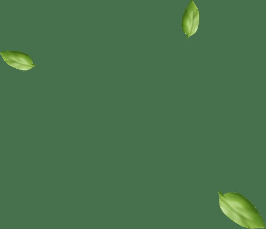 h2 basil - Taze Çorum Leblebisi